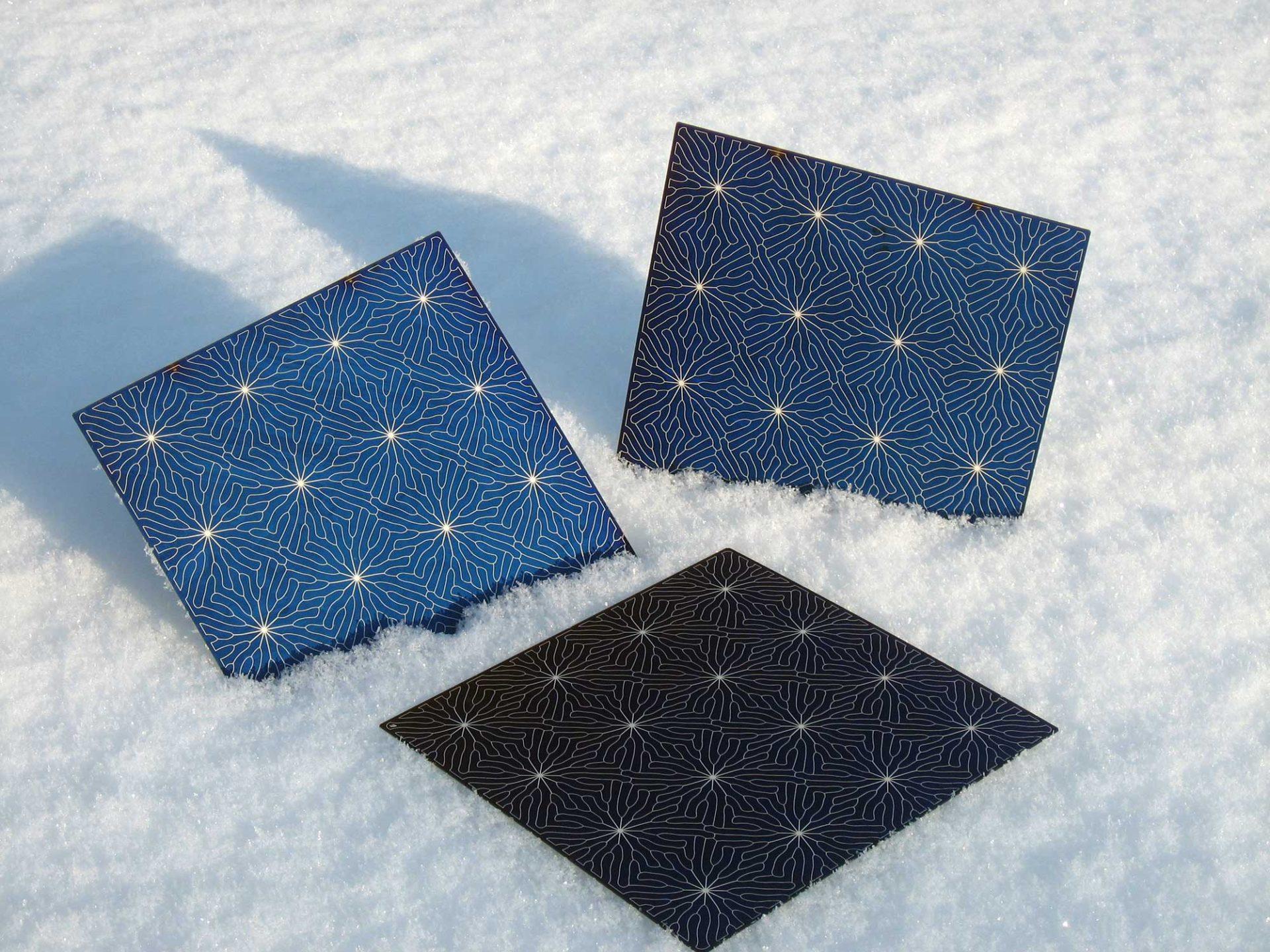 Solland Solar zonnecel - Rene Verkaart)